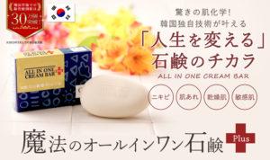 魔法のオールインワン石鹸(プラス)