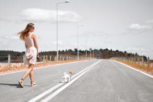 いぬを連れて道路を歩く女性